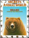 Bears: Animals That Hibernate - Isidro Sánchez