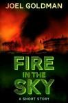 Fire In The Sky - Joel Goldman