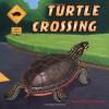 Turtle Crossing - Rick Chrustowski