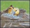 The Goose Family Book - K Lorenz, K Lorenz, Konrad Lorenz