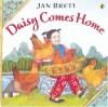 Daisy Comes Home - Jan Brett, Jan Brett