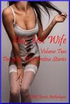 Hot, Hot Wife Volume Two: Ten Sexy Wife Erotica Stories - Patti Drew, Brianna Spelvin, Andi Allyn, Jane Kemp, Tara Skye