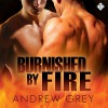 Burnished by Fire: By Fire, Book 3 - Andrew Grey, Peter B. Brooke