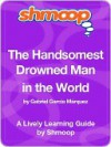 The Handsomest Drowned Man in the World - Shmoop