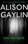 Into the Dark (Brenna Spector) - Alison Gaylin