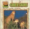 Cheetahs - Victor Gentle, Janet Perry
