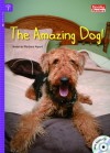 The Amazing Dog (Rainbow Readers) - Barbara Alpert