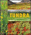 Tundra: The Barren Wilderness - Michael George
