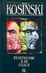 Pustelnik z 69 ulicy - Jerzy Kosiński
