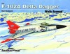 F-102 Delta Dagger Walk Around - Ken Neubeck