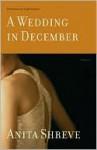 A Wedding in December - Anita Shreve