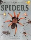 Spiders - Barbara Taylor