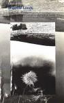 Shadow Lands: Selected Poems - Johannes Bobrowski