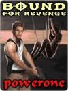 Bound for Revenge - Powerone