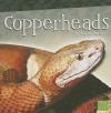 Copperheads - Joanne Mattern