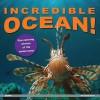 Incredible Ocean!: Eye-Opening Photos of Life Underwater - Play Bac