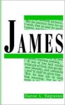 James: Faith At Work - Daniel L. Segraves