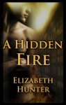 A Hidden Fire - Elizabeth Hunter