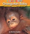 Orangutan Baby - Monica Hughes