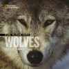 Face to Face With Wolves - Jim Brandenburg, Judy Brandenburg