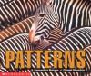 Patterns - Samantha Berger, Daniel Moreton
