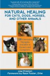 Natural Healing for Cats, Dogs, Horses, and Other Animals - Lisa Preston