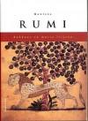 Rakkaus on musta leijona - Rumi