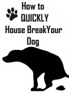How To House Train Your Dog - David Banks