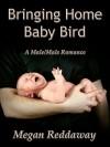 Bringing Home Baby Bird - Megan Reddaway