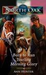 North Oak: Books 1-3 - Ann Hunter