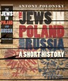 The Jews in Poland and Russia: A Short History - Antony Polonsky