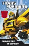 Bumblebee in Danger. - Hasbro