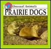 Prairie Dogs - Lynn M. Stone