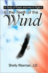 In the Teeth of the Wind: A Study of Power and How to Fight It - Shelly Waxman
