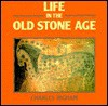 Life In The Old Stone Age - Charles Higham