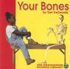 Your Bones - Terri DeGezelle