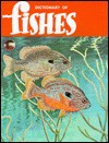 A Dictionary Of Fishes - Rube Allyn