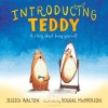 Introducing Teddy: A gentle story about gender and friendship - Jess Walton, Dougal MacPherson