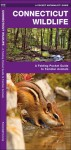 Connecticut Wildlife: A Folding Pocket Guide to Familiar Species - James Kavanagh, Raymond Leung