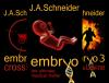 EMBRYO: A Raney & Levine Thriller (6 Book Series) - J.A. Schneider