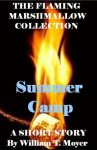 Summer Camp (The Flaming Marshmallow) - William Moyer