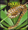 Snakes and Their Homes - Deborah Chase Gibson