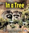 In a Tree - Jennifer Boothroyd