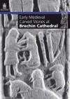 Early Medieval Carved Stones at Brechin Cathedral - Neil Cameron, Iain Fraser, Strat Halliday, Oliver Brookes, Steve Wallace, John Borland