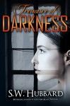 Treasure of Darkness: a romantic thriller (Palmyrton Estate Sale Mystery Series Book 2) - S. W. Hubbard