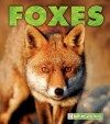 Foxes - Mary Ann McDonald
