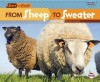 From Sheep to Sweater - Robin Nelson