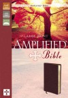 Amplified Large Print Bible-AM - Anonymous
