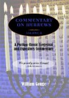 Commentary on Hebrews: Exegetical and Expository - Vol. 2 (PB) - William Gouge, Peter Masters, Joel R. Beeke