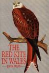 Red Kite in Wales - John Evans
